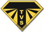 T.V.S. ENTERPRISES LLC